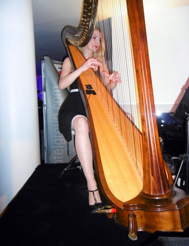 Harfen-Musik beim Empfang, danke an Tim K. für das Foto!