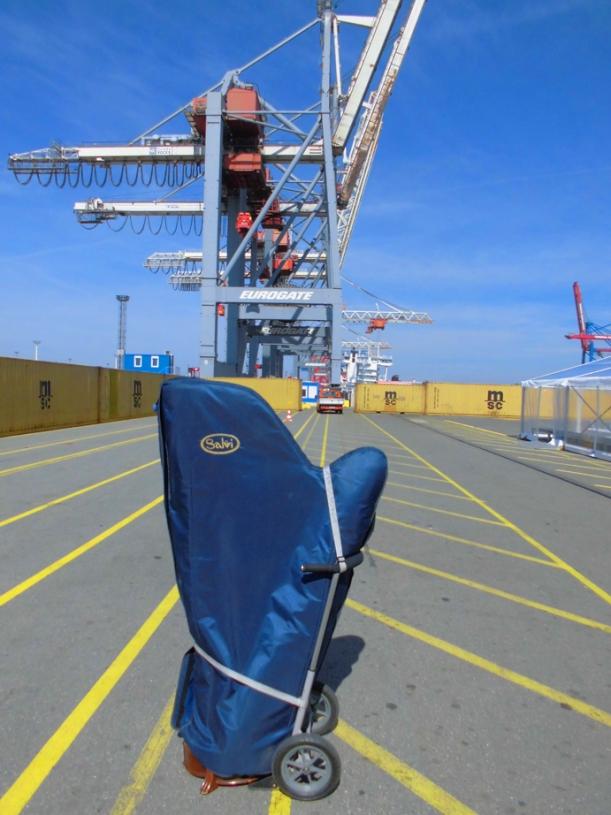 Harfe am Hafen