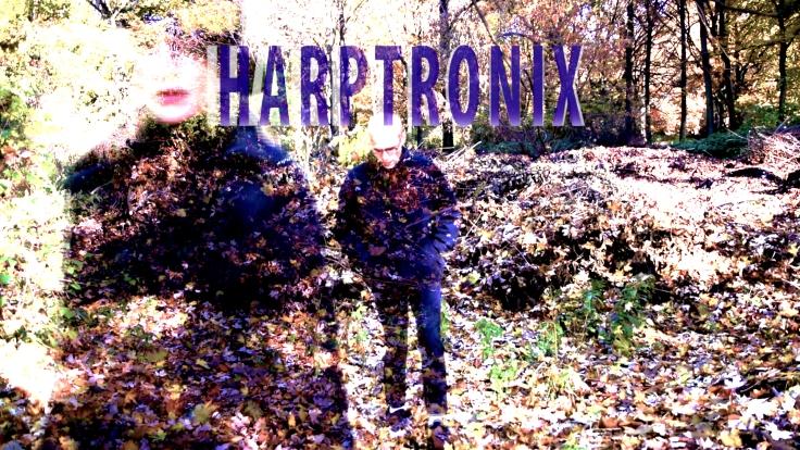 HARPTRONIX - Harfe und DJ