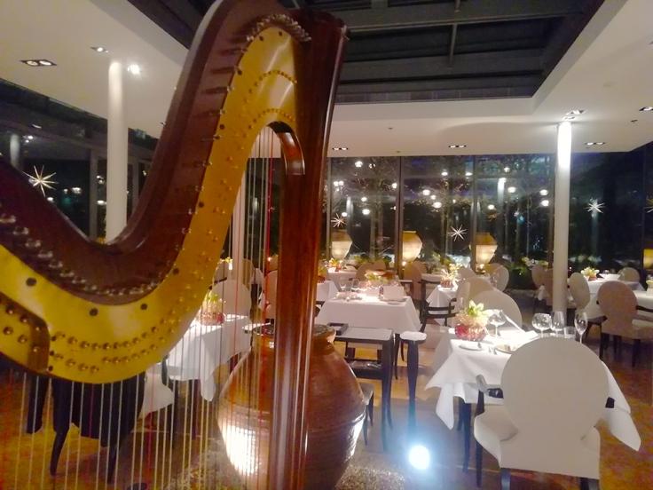 harfenmusik, harfe live, livemusik, eventmusik , hauptstadtharfe, simonetta ginelli , harpi in berlin book a harpist in berlin , harfenistin buchen